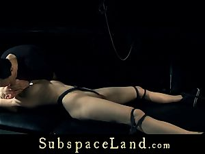 lengthy haired light-haired honey strong jerked while roped